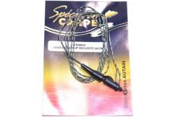 Spécimen Carpe Lead core clip sécurité